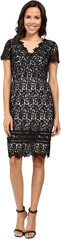 Lace Dress with Trim Detail