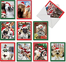 Holiday Animal Selfie - 20 Assorted Merry Christmas Cards with Envelopes (4 x 5.12 Inch) - Cute Pet and Zoo Animals, Funny Happy Holidays Notecard Set (10 Designs, 2 Cards Each) AM2373XSG-B2x10