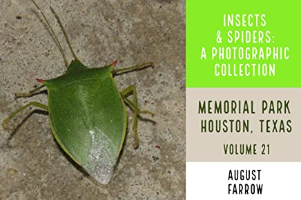 Insects & Arachnids: A Photographic Collection: Memorial Park: Houston Texas - Volume 21 (Arthropods of Memorial Park) (English Edition)