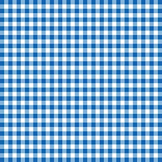 Disposable Blue and White Gingham Paper Napkins (Pack of 100)
