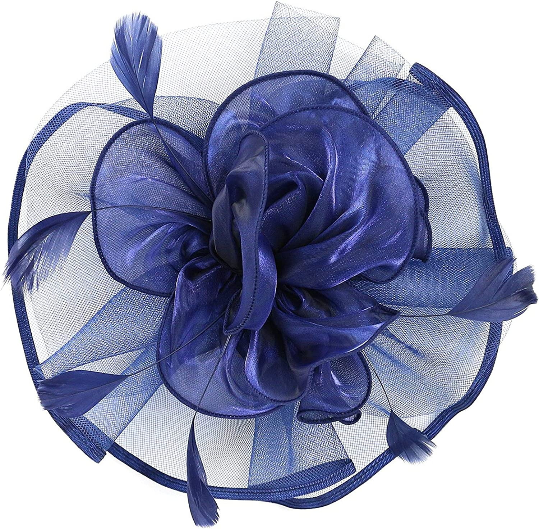 Fascinators Hat for Women Tea Party Headband Kentucky Derby Wedding Flower Mesh Feathers Hair Clip 20s 50s Hat