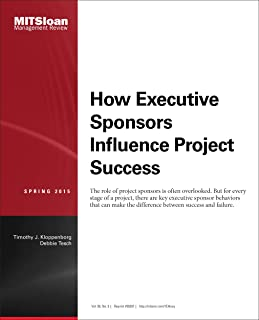 How Executive Sponsors Influence Project Success - Journal Article