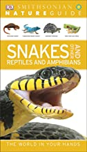 Nature Guide: Snakes and Other Reptiles and Amphibians: The World in Your Hands (DK Nature Guide)