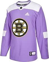 boston bruins hockey fights