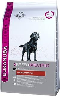 Eukanuba Labrador Retriever Adulto [12 Kg]