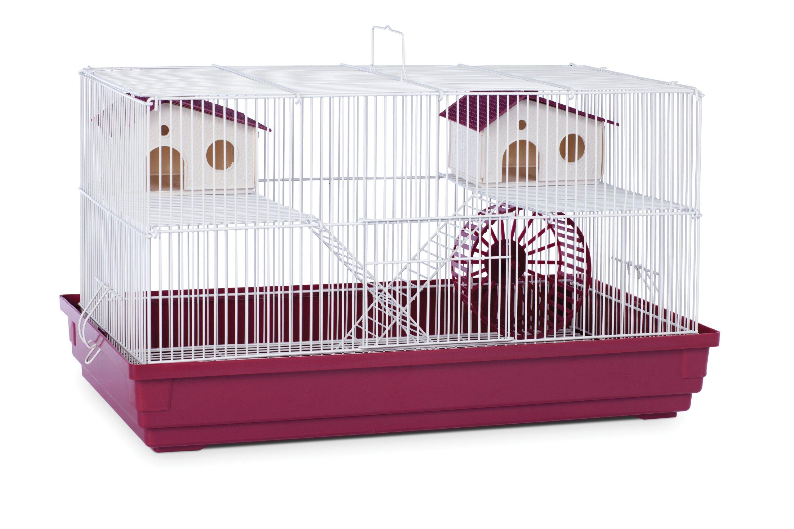 Prevue Hendryx SP2060R Hamster Bordeaux