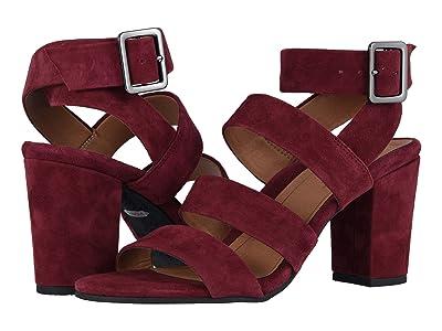VIONIC Blaire Suede (Wine) High Heels
