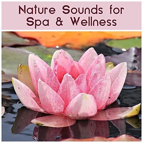 Lotus Flower By Kings Of Nature On Amazon Music Amazoncom