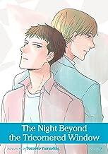 The Night Beyond the Tricornered Window, Vol. 8 (Yaoi Manga) (English Edition)