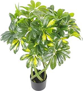 Leaf 70cm Twisted Stem Gold Capella Arboricola Artificial Plant Bonsai Bush