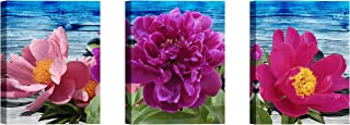 Canvas Wall Art for Living Room Red Peony Decor Pictures Pink and Purple Floral Paintings Print Artwork 12x16inch x3Pieces