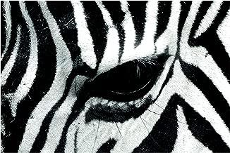 Self-Adhesive Wallpaper - Zebra Crossing - Landscape Format 225 x 336 cm