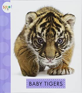 Baby Tigers (Spot (Library))