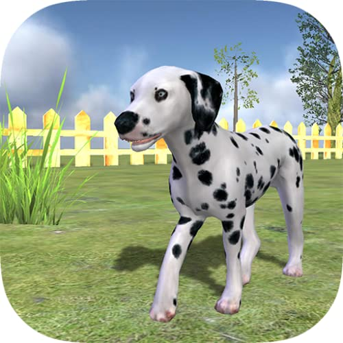 Play with your Dog: Dalmatian