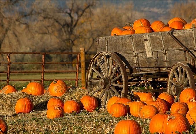 OFILA Farm Machine Backdrop 5x3ft Rural Landscape Photos Background Rustic Theme Party Decoration Autumn Season Photos Western Ranch Events Decor Agricultural Channel Studio Photos Props