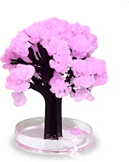 Thumbs Up! Magic Sakura El Asombroso árbol en Miniatura Rosa