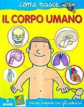 Permalink to Il corpo umano PDF