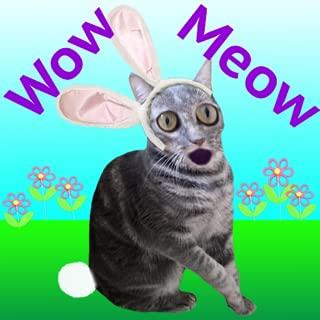 Wow Meow Bunny Cat