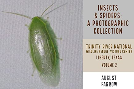 Insects & Arachnids: A Photographic Collection: Trinity River National Wildlife Refuge - Visitors' Center: Liberty Texas - Volume 2 (Arthropods of Liberty Book 3) (English Edition)