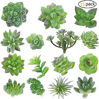 Fake Succulent, Artificial Succulents, Faux Succulents, Artificial Succulents Plants, Fake Succulent Unpotted, Bulk Artificial Succulents for Birthday Home Decor Indoor Wall Garden DIY, Pack of 15 Pcs