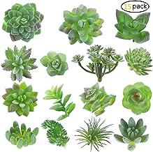 Best miniature silk plants Reviews