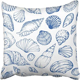 Best sketch of sea shell Reviews