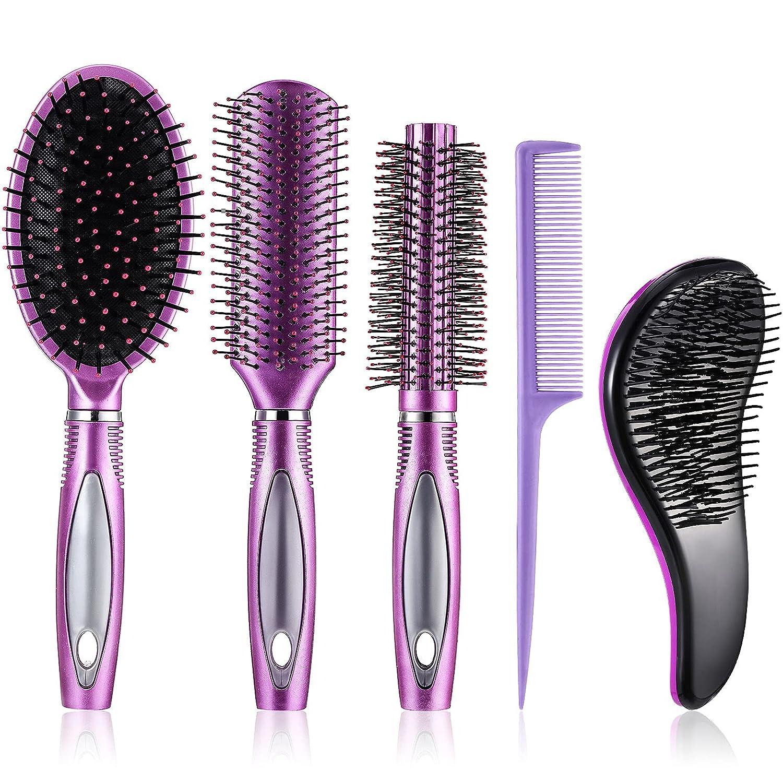 5 Pieces Hair Popular standard Brush Round Set Free shipping Paddle Detangling