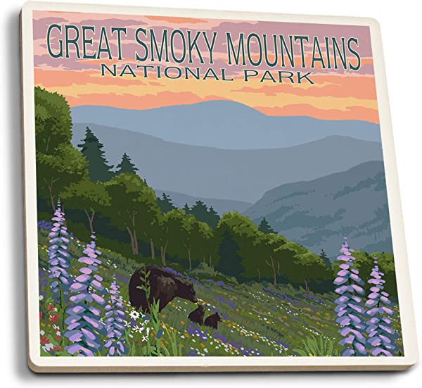 Lantern Press Great Smoky Mountains National Park Bear And Spring Flowers Set Of 4 Ceramic Coasters Cork Backed Absorbent