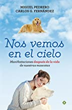 Best nos vemos en el cielo Reviews