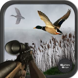 Adventure Duck Hunting