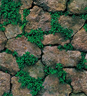 Best moss stick at home Reviews