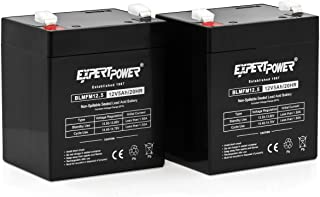 ExpertPower EXP1250-2 lead_acid_battery, 2 Pack