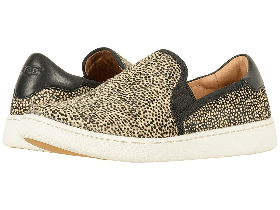 UGG Cas Exotic (Black/Tan Dotted) Women