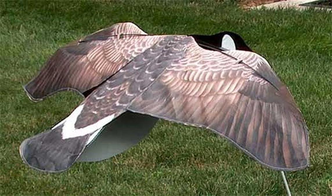 Sillosocks Flapping Canada Snow Goose Decoy, Grey