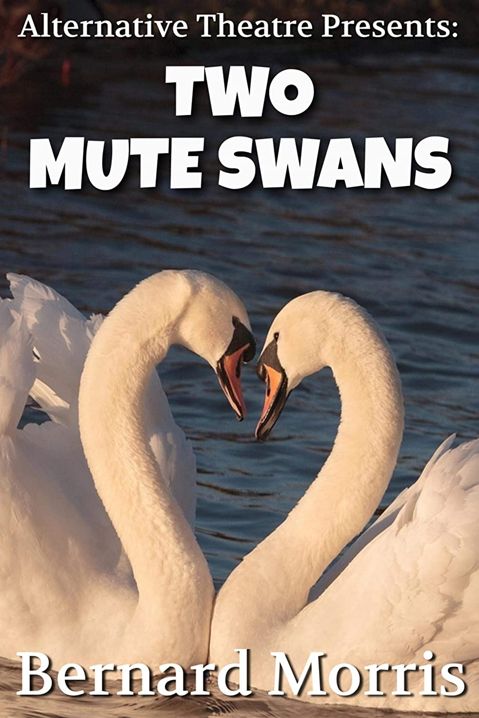 Alternative Theatre Presents: Two Mute Swans (English Edition)