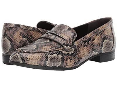 Circus by Sam Edelman Hannon (Buff Taupe) Women