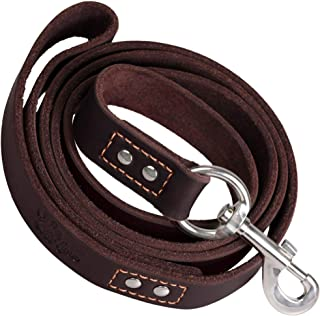 ADITYNA Heavy Duty Leather Dog Leash 6 Foot - Strong and Soft Leather Leash for Extra Large, Large and Medium Dogs - Dog Training Leash