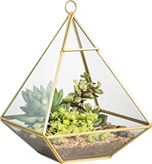 NCYP Copper Pyramid Vertical Metal Glass Geometric Wall Hanging Terrarium Brass Tabletop Succulent Air Plants Holder Planter Fern Moss Box Display Vase Pot 5.9 x 5.9 x 7.87 inches Gold