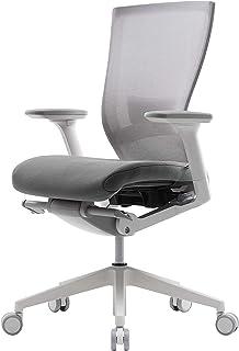SIDIZ T50 Highly Adjustable Ergonomic Office Chair (TNB500LDA): Advanced Mechanism for Customization/Extreme Comfort, Ventilated Mesh Back, Lumbar Support, 3D Arms, Seat Slide/Slope (Gray)