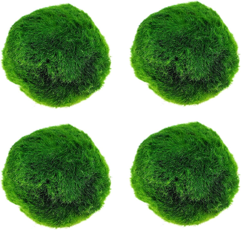 IYSHOUGONG 4 PCS Aquarium Moss Natural Decorative Super sale period limited Green Max 77% OFF Bal