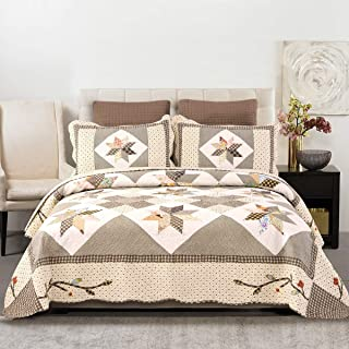 YAYIDAY Patchwork Bedspread Quilt Set Queen Size - Breathable Cotton Floral Quilted Blanket with Shams, Hypoallergenic Modern Coverlet