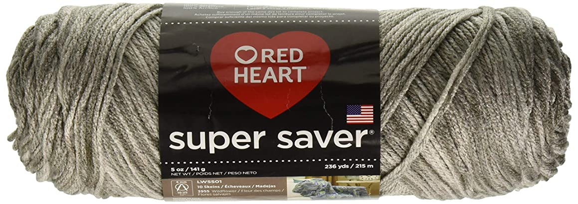 RED HEART E300.3976 Super Saver Yarn, Soapstone