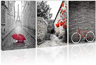 Black and White Romantic Red Umbrella Eiffel Tower in The Rain Wall Art Decor Flower Bicycle Tree Leaves Canvas Painting Kitchen Prints Pictures for Home Living Dining Room