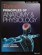 Best anatomy and physiology international edition Reviews