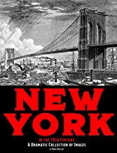 New York in the 19th Century: A Dramatic Collection of Images