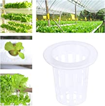 Sepikey Malla ranurada Transparente Cultivo sin Suelo Ollas de Verduras Macetas Cestas Tazas para hidroponía (50 Piezas)