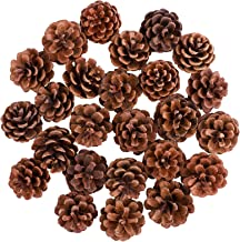 Cooraby 24 Pieces Mini Pine Cones Christmas Snow Pine Cones Natural Ornament 4 to 6cm Pine Cones Pendant for Fall and Chri...