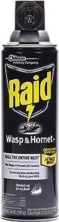 Raid Wasp & Hornet Killer Spray, 14 OZ (Pack - 1)