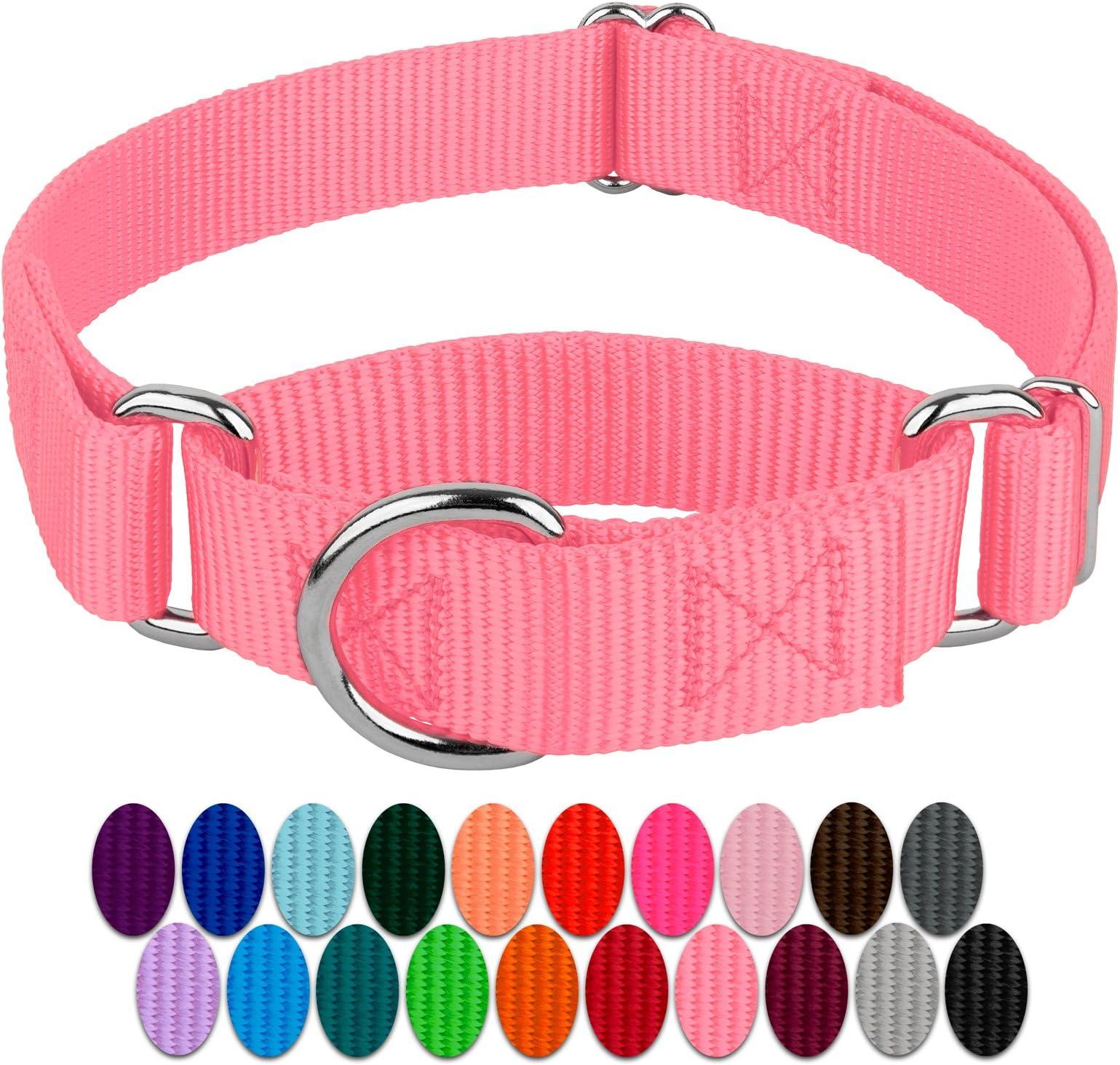 1 Metal Buckle Pink Floral Burst Dog Collar Pink Floral Dog Collar Martingale Dog Collar