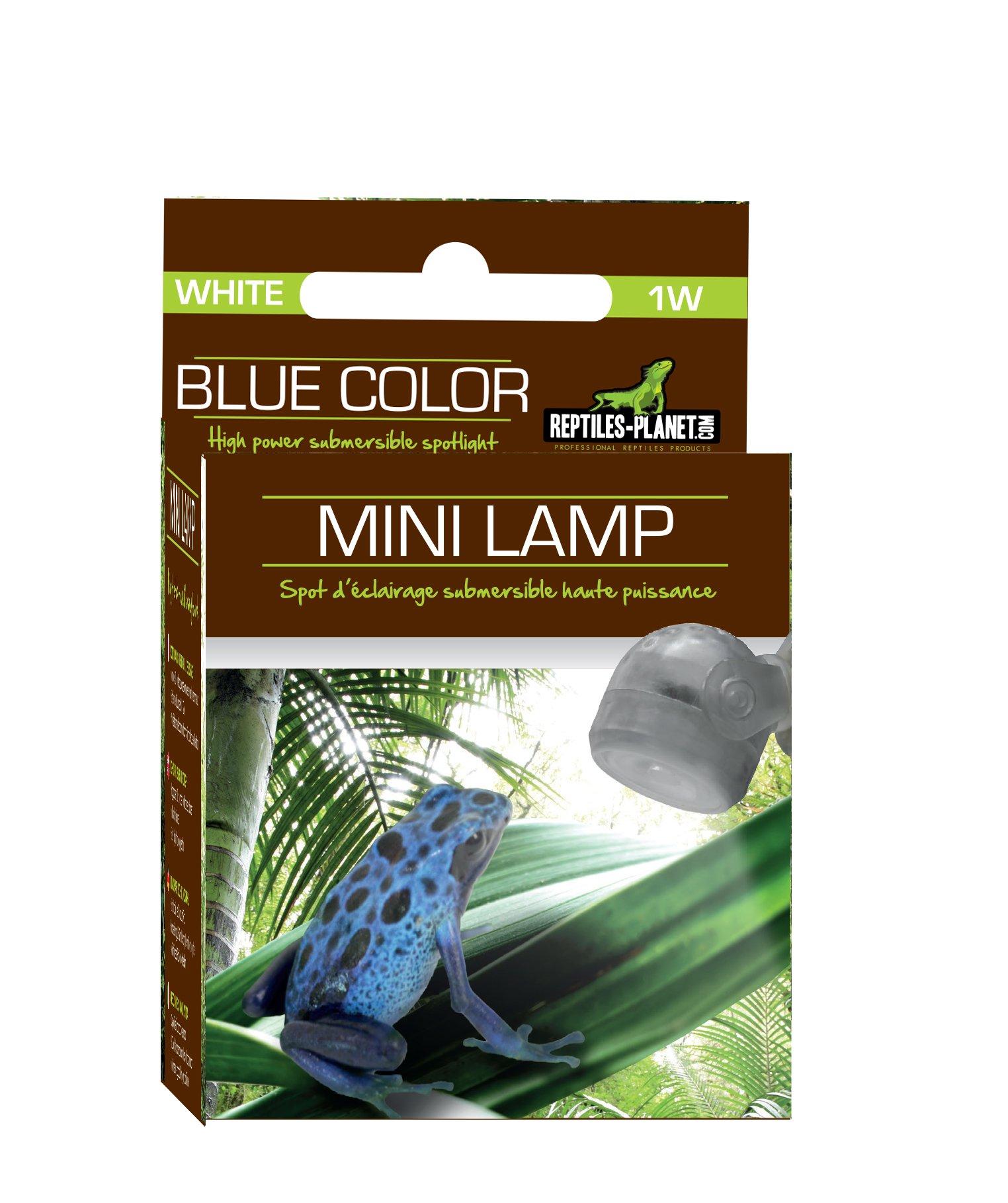 Reptiles Planet iluminación Mini lámpara LED Blanca Serpiente o Anfibios: Amazon.es: Productos para mascotas